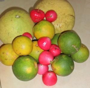 pompom, orange and appel
